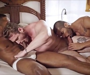 2black and 1ginger shaft